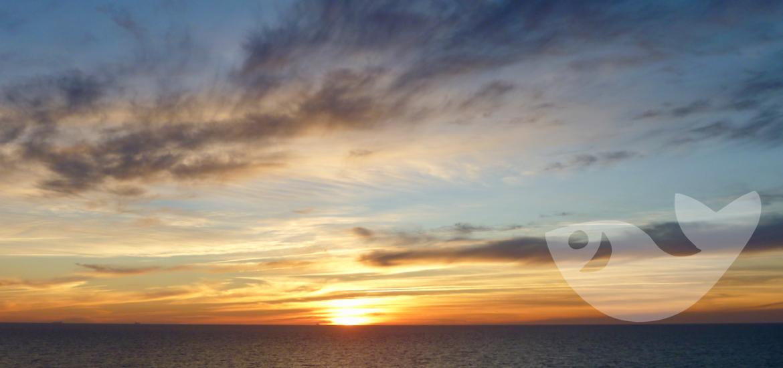 Sonnenuntergang mit AIDA auf hoher See