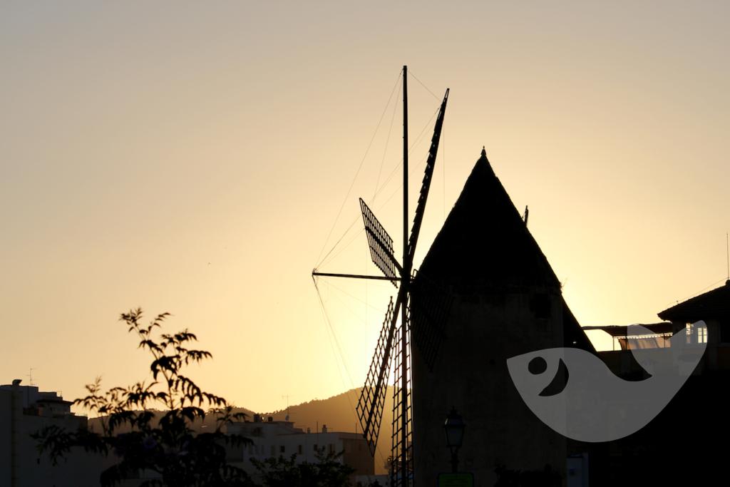 Mühle in Palma de Mallorca in Nähe des Hafens