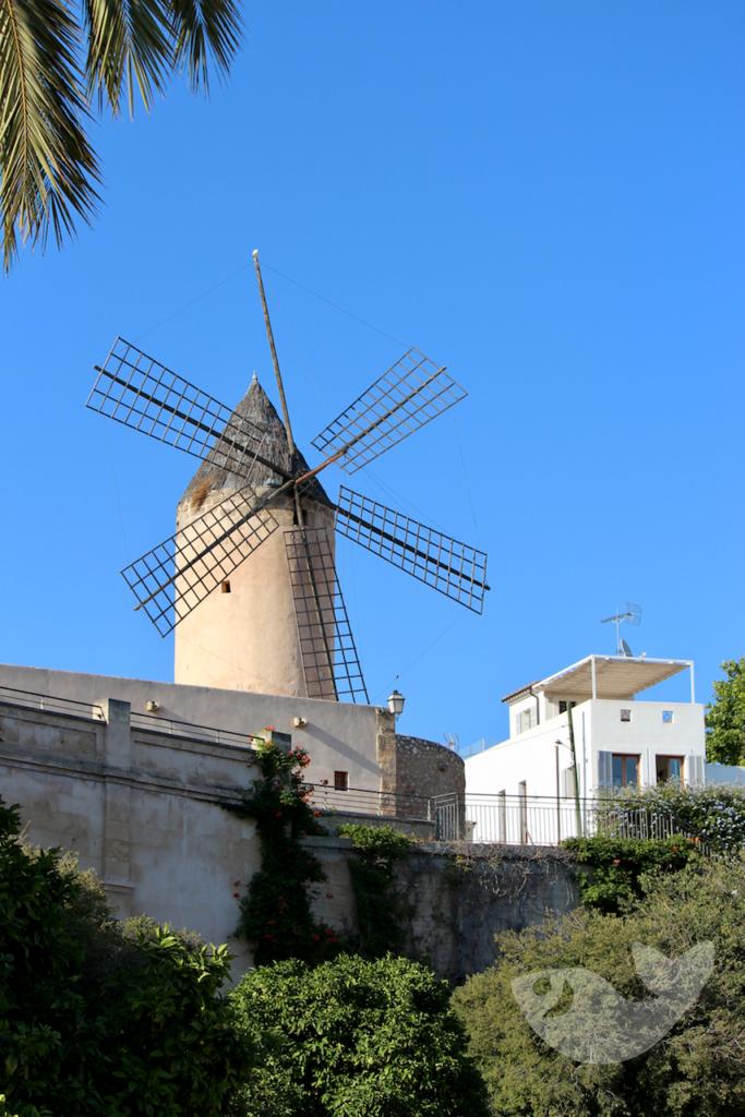 Windmühle am Hafen von Palma de Mallorca