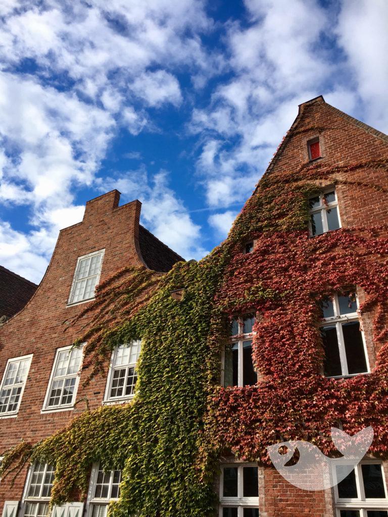 Holländisches Viertel im Herbst