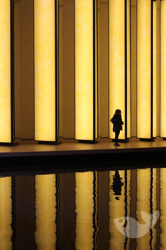 Lichtinstallation des dänisch-isländischen Künstlers Olafur Eliasson in der Louis-Vuitton-Foundation in Paris