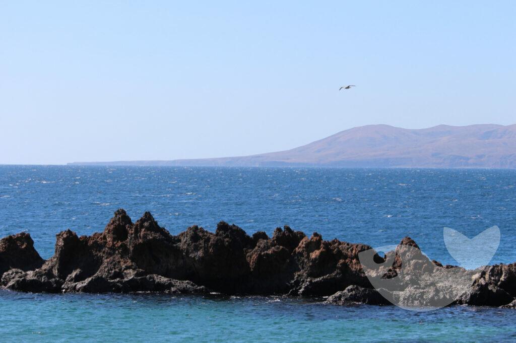 Playa Chica: Toller Strand zum Schnorcheln und Tauchen