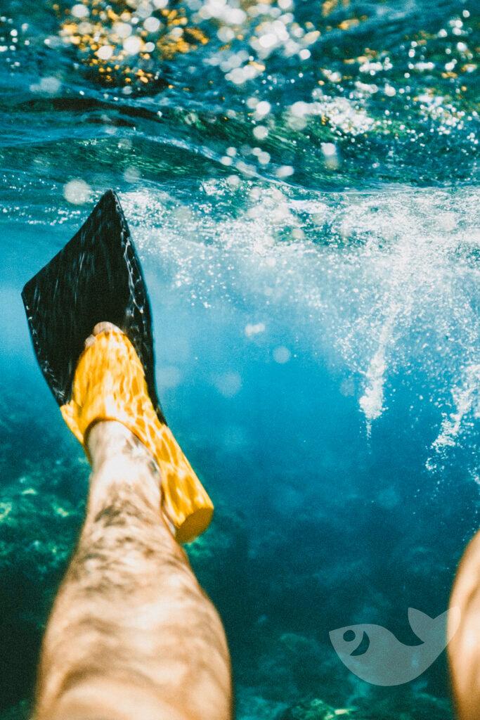 Schnorcheln: Auf Lanzarote die Unterwasserwelt erkunden