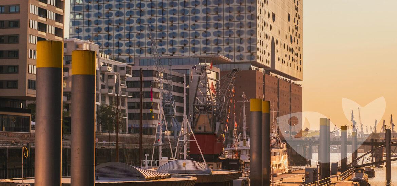 AIDA-Neustart: Start an Hamburg Hafen
